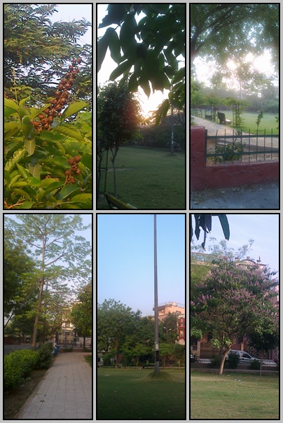 Parks of Noida