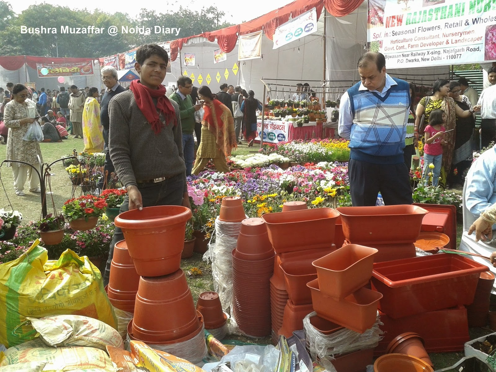 Floriculture - Horticulture stalls at Noida Flower Show 2014