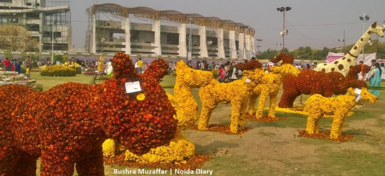 Noida Diary: Noida Flower Show 2017