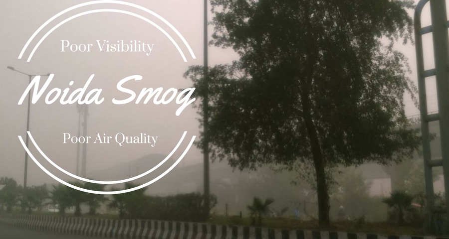 Noida Smog - Botanical Garden Metro Station Covered Under Smog