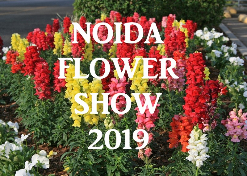 33rd Vasant Utsav - The NoidaFlower Show 2019