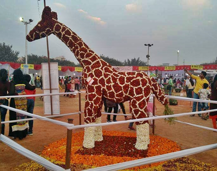 Colourful Topiary Animals are a Big Draw at Noida Flower Show
