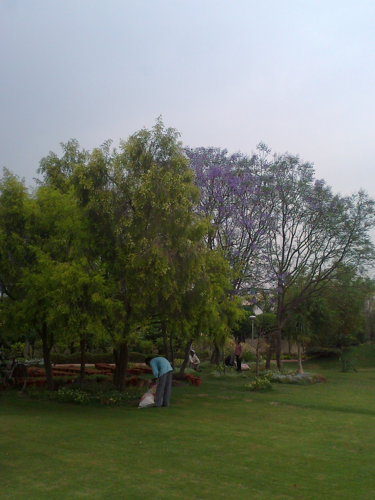 Life in Noida – Parks