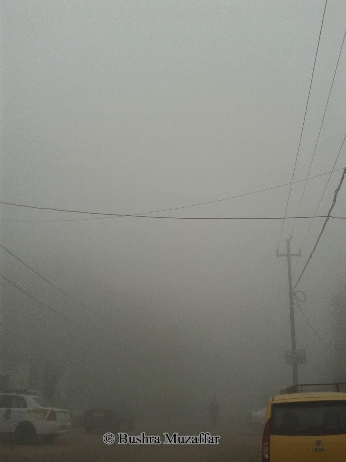 Fog in Noida