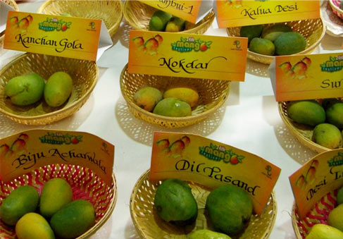 Mango Festival 2015 – Top Things to Do in Noida and Around during Summer
