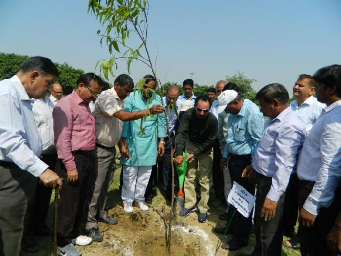Green Noida – Van Mahotsav 2015