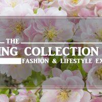 Spring Collection 2017 in Noida, Delhi, NCR