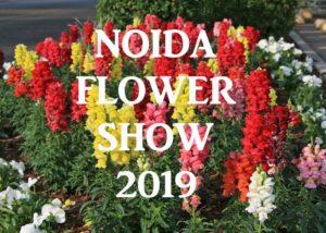 33rd Vasant Utsav - The NoidaFlower Show 2019
